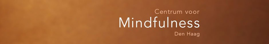 header centrum mindfulness